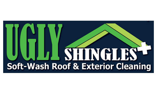 Ugly Shingles Coupons in Troy, MI