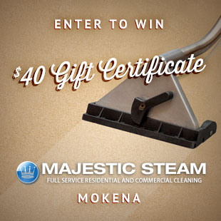 Majestic Steam In Mokena Il Coupons To Saveon Home