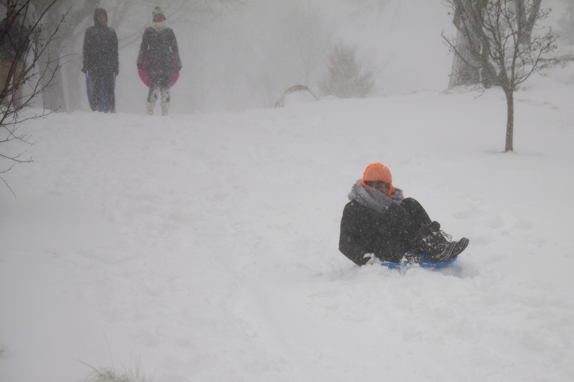 Kaitlyn Martin  sleds down a hill next to the Tabler Arts Center. ERIC SCHMID/THE STATESMAN