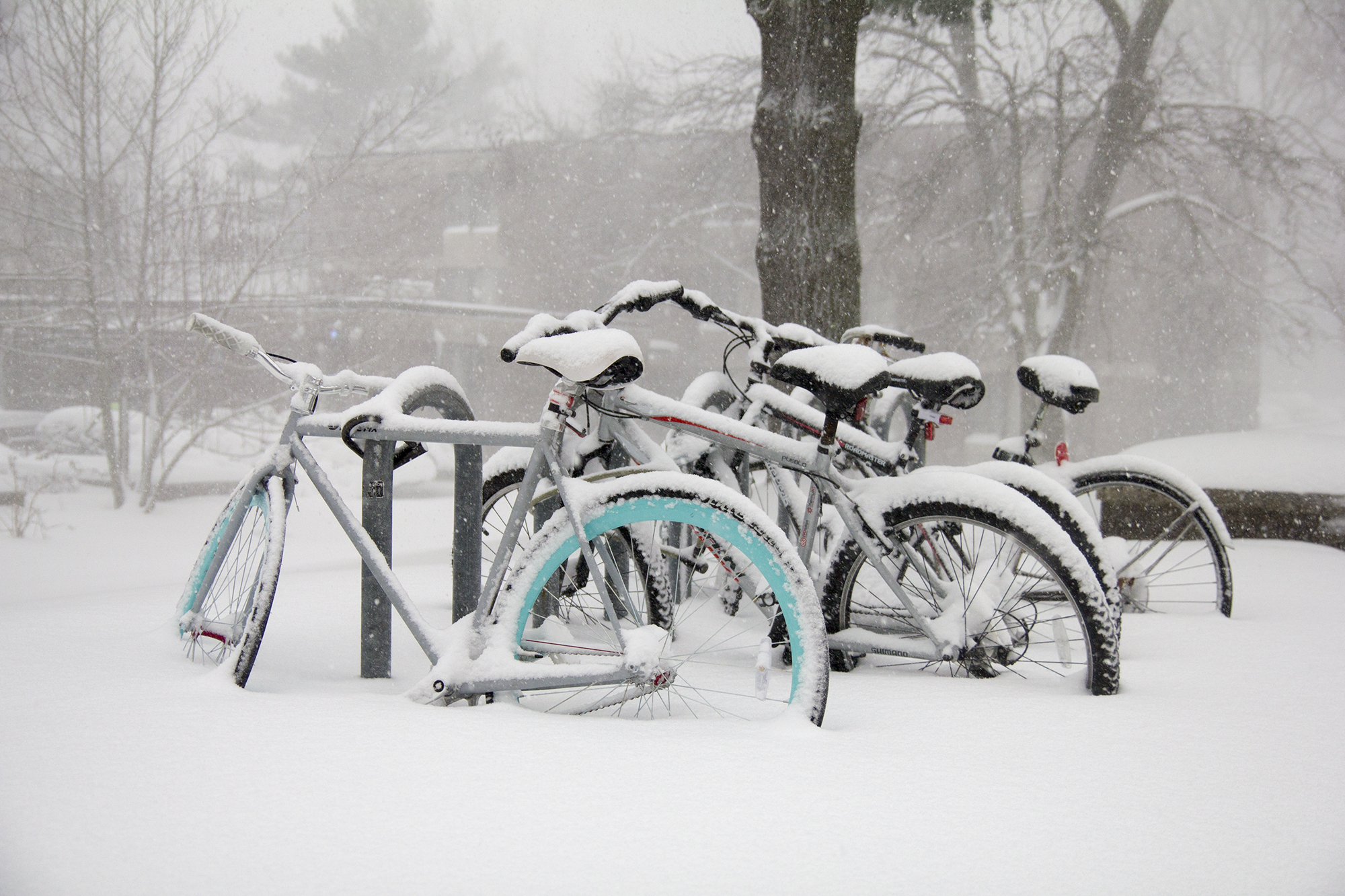 Bicycles buried in snow in front of Toscanini College. <em>ERIC SCHMID/STATESMAN FILE</em>