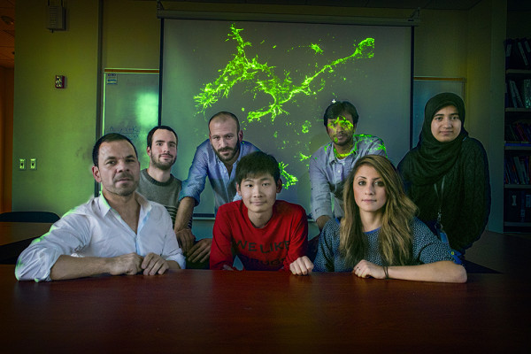 Stony Brook, NY; Stony Brook University: Assistant Professor in the School of Medicine's Pharmacological Sciences Department Adan Aguirre, PhD (Front left) with members of his team Jianchos Gao (center front), Nadia McMillan (Right Front) and (rear Left to right) Michael Klingener, Dr. Javier Palazuelos, Manideep Chavali, and Israa Hussein with a projected image of a rare type of glial cells, called NG2 glia.