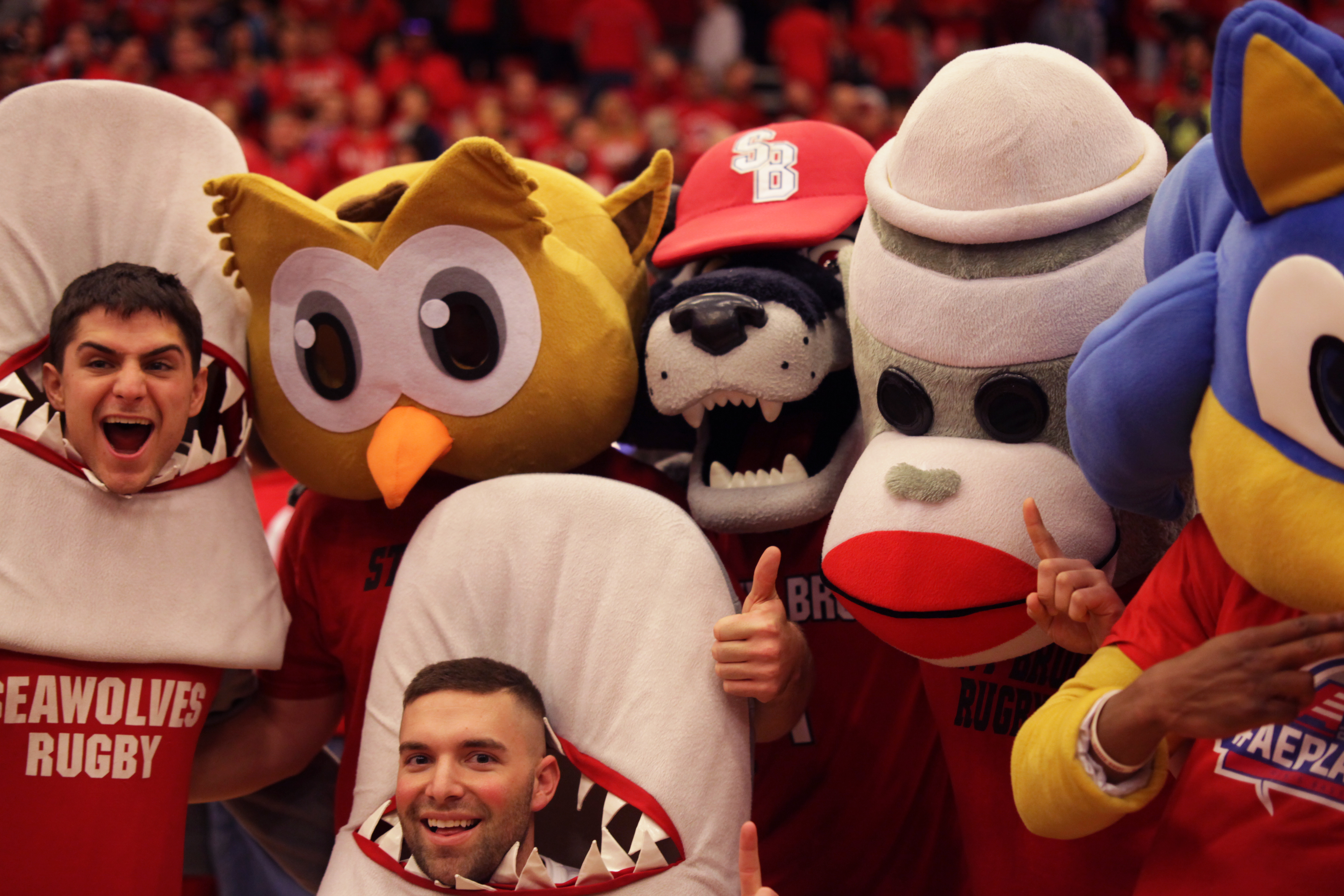 Mascots join together to celebrate Stony Brook's victory. CHRISTOPHER CAMERON/THE STATESMAN
