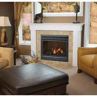 Napoleon BGD36 Direct Vent Natural Gas Fireplace
