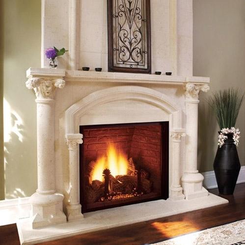 Napoleon GDI44 32 Inch Natural Gas Fireplace Insert U S A