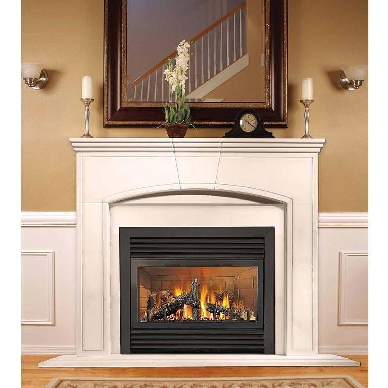 Napoleon GD33NR Electronic Ignition Direct Vent Natural Gas Fireplace