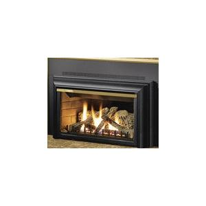 Napoleon GDIZC 25-Inch Natural Gas Fireplace Insert