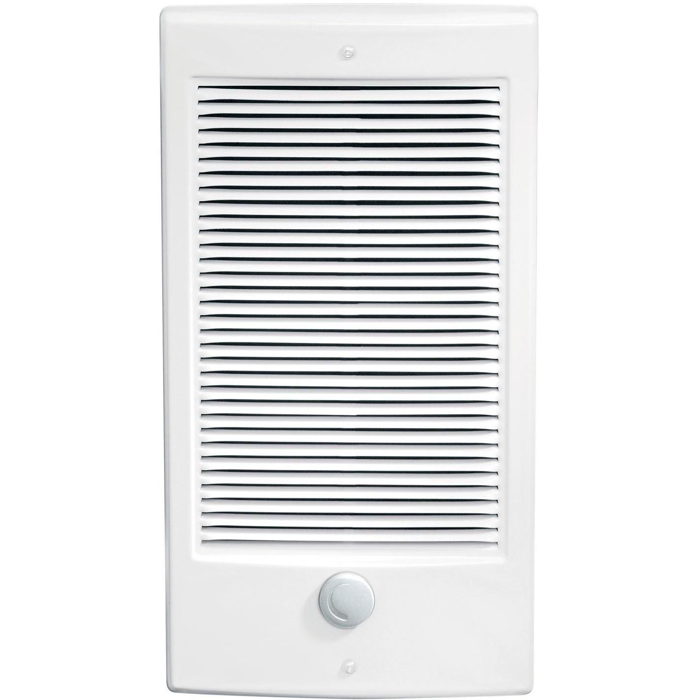 Dimplex 17-Inch 1000W Fan Forced Wall Insert Heater - 120...