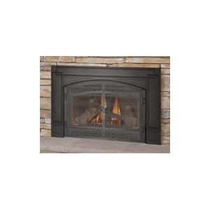 Napoleon GDI30 30-Inch Natural Gas Fireplace Insert