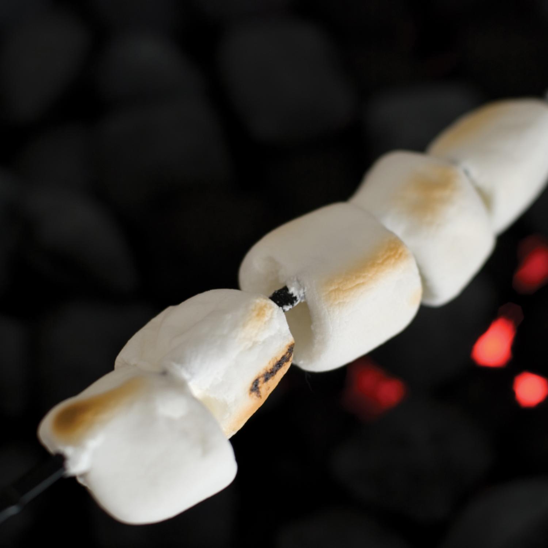 Non-stick Marshmallow Skewers Set