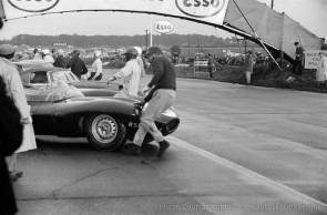 1955 Jaguar D-Type XKD 504