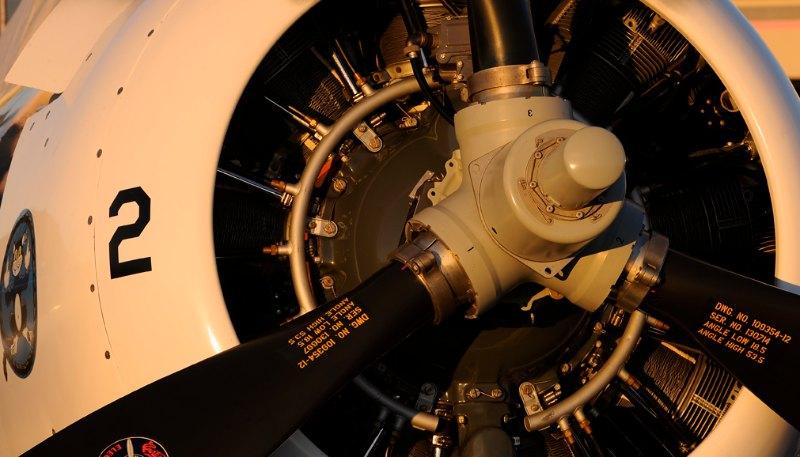 Grumman FM-2 Wildcat. Air Biscuit.