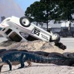 """Legend of """"Big Mo"""" – The Monster Gator of Sebring"""