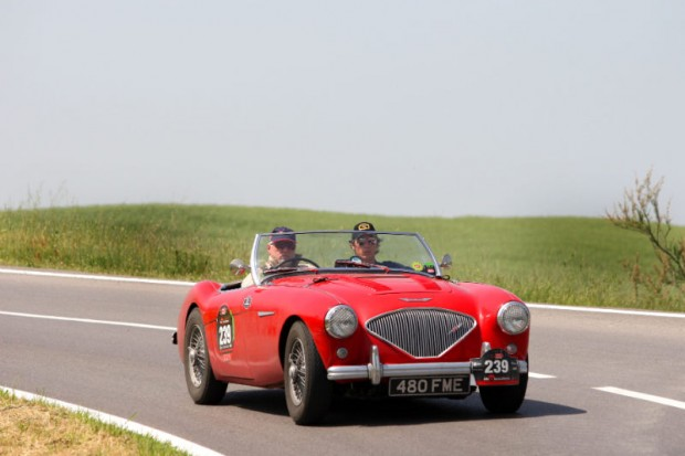 1954 Austin Healey 100-4 BN1 picture