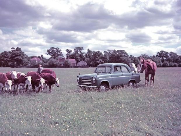 1953 Ford Anglia farm