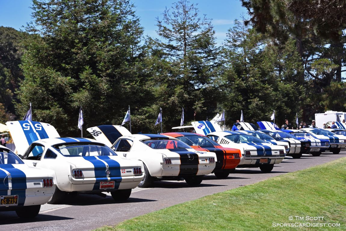 Shelby GT350 Mustangs from the Monterey Motorsports Reunion