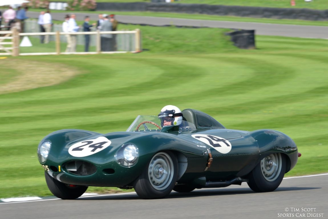 goodwood revival 2014 jaguar d type photos results. Black Bedroom Furniture Sets. Home Design Ideas