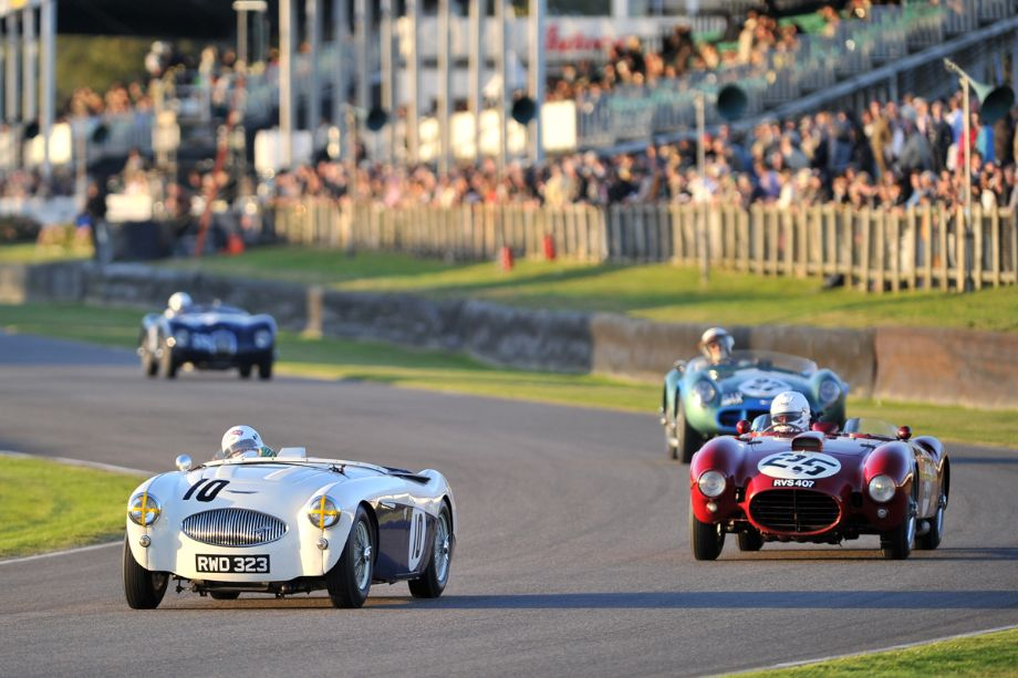 Austin-Healey 100S and Lancia D24