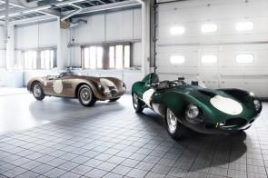 Jaguar C-Type and Jaguar D-Type