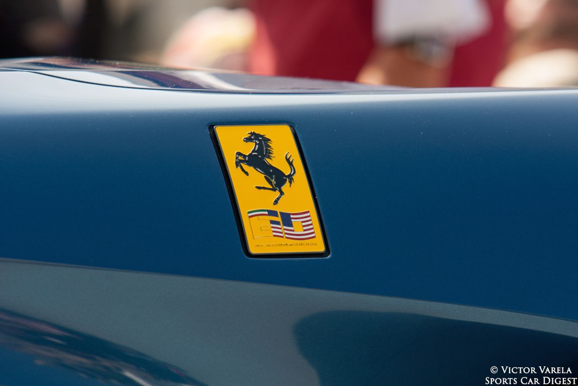 The fender badge on the F60 America.