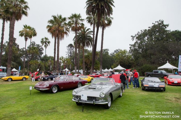 Ferraris at the park