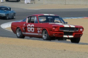 Mark Cane - 1966 Shelby GT350