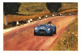 Dan Gurney in Cobra by Wallace Wyss