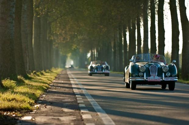 1955 Jaguar XK140 rally