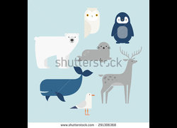 Stock-vector-vector-set-arctic-and-antarctic-animals-penguin-polar-bear-seal-reindeer-whale-snowy-owl-291306368