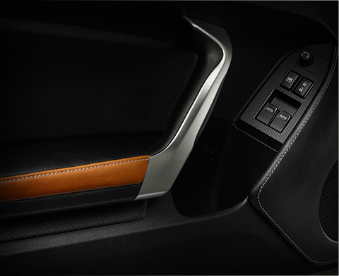 Exclusive Camel Interior Trim
