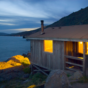 Foraging - Steep Ravine Cabins (#4), Mt. Tamalpais State Park, Califormia - Alvin Tenpo's Photos