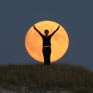 Foraging - Sabine est dans la Lune