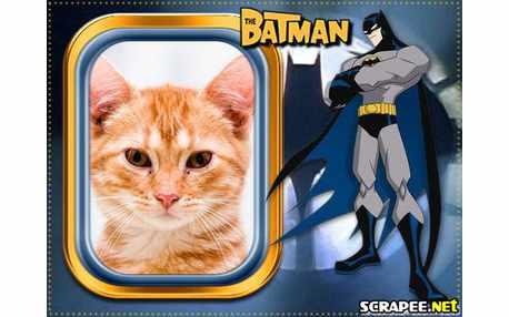 Batman TV series  Wikipedia