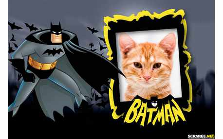 Batman Inicia 2005 4K UHD HDR Latino  Castellano
