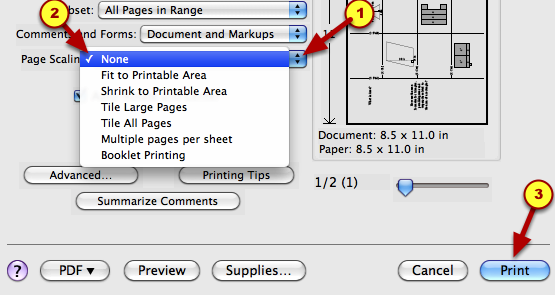 """5. If necessary, click on the arrow and select """"None"""".  Then print."""