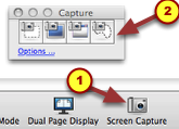 "1. Find the screen capture tool.  It is usually on your toolbar. Click on the ""Screen Capture"" icon for the toolbar to appear."