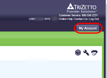 Log in to Trizetto Website