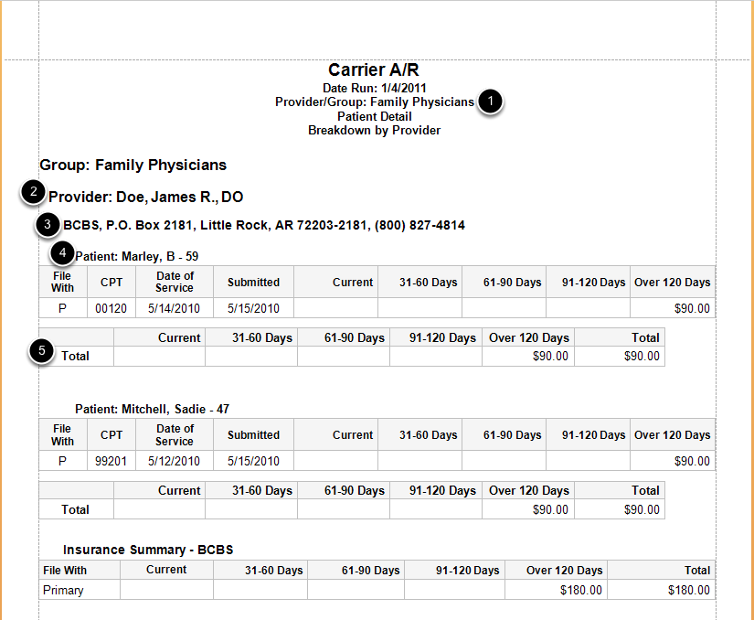 Sample Carrier A/R Report by Group, broken down by Provider and showing Patient Details.