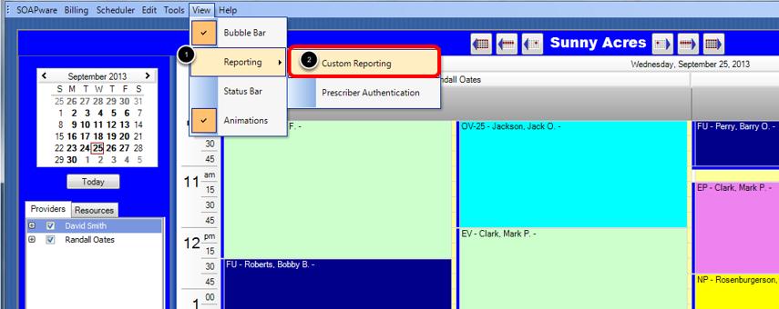Access the Custom Patient Report