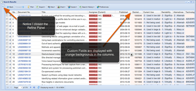 Custom Fields in the Data Columns