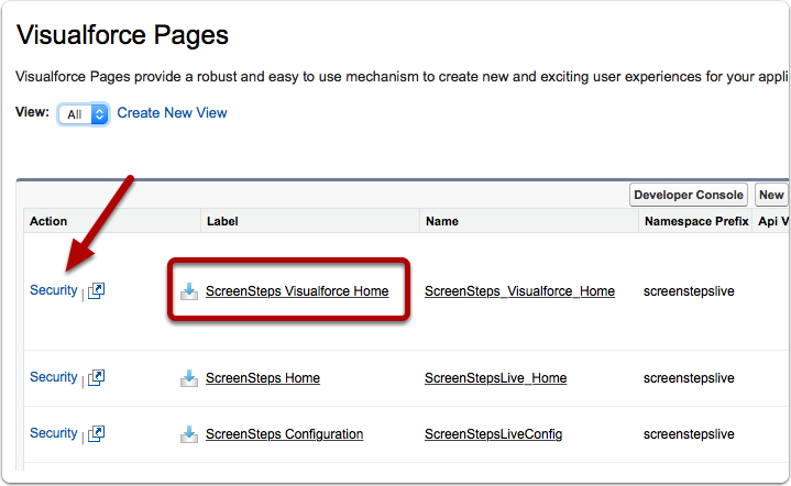 """Click on Security Link for """"ScreenSteps Visualforce Home"""" Visualforce Page"""