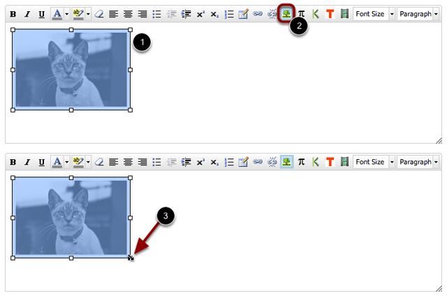 Edit Embedded Image