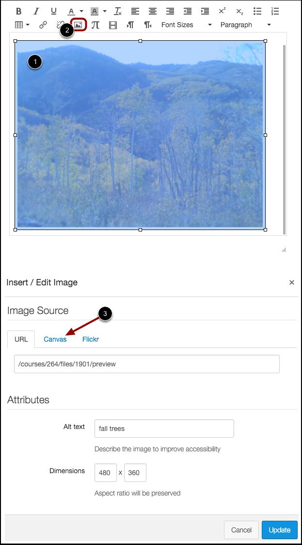 Edit Image Properties