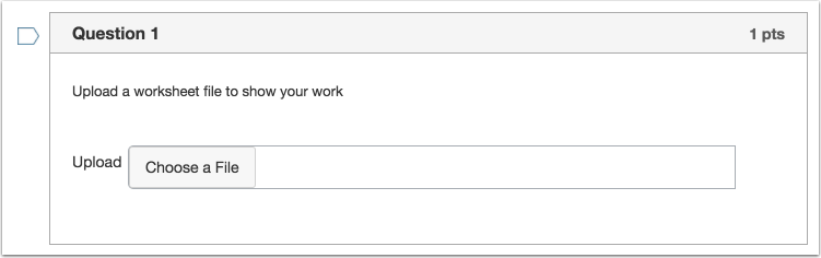 Student View of File Upload question
