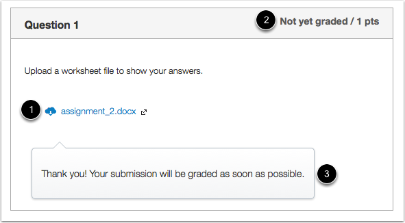 Student View of File Upload Submission