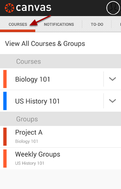 View Courses and Groups