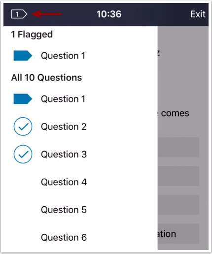 View Flagged Questions