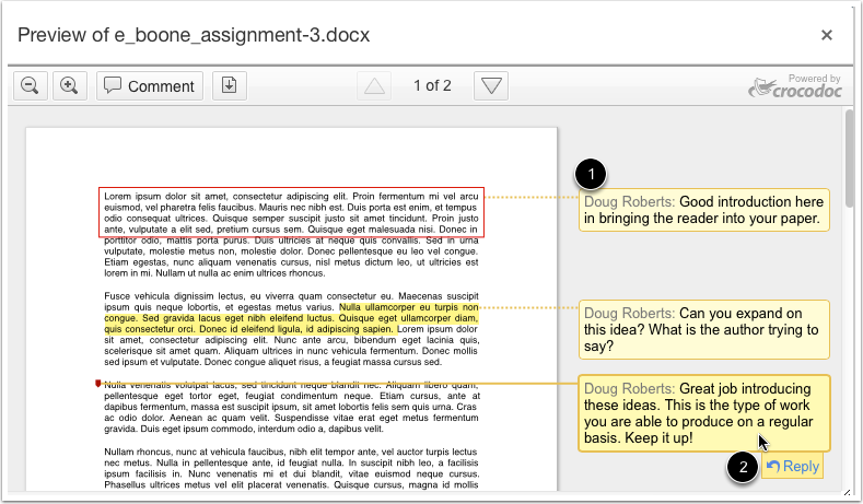 View Annotated Comments