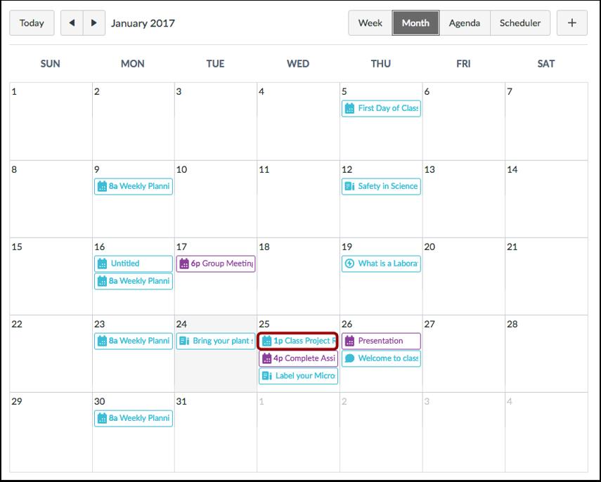 View Calendar