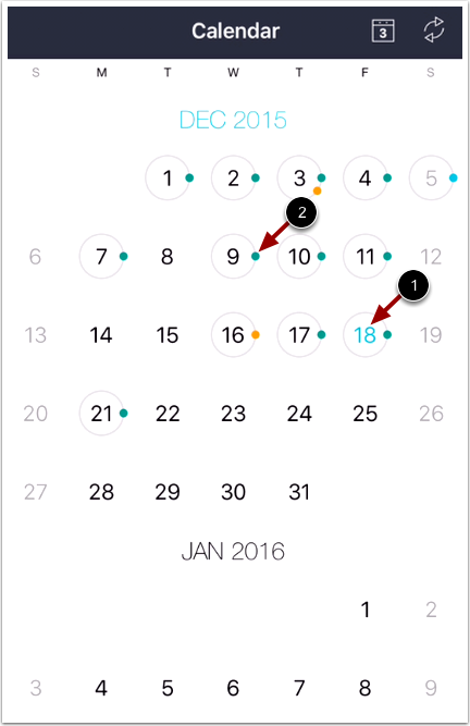 View Monthly Calendar