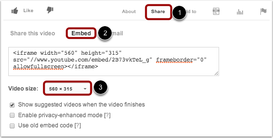 Copy Video Embed Code